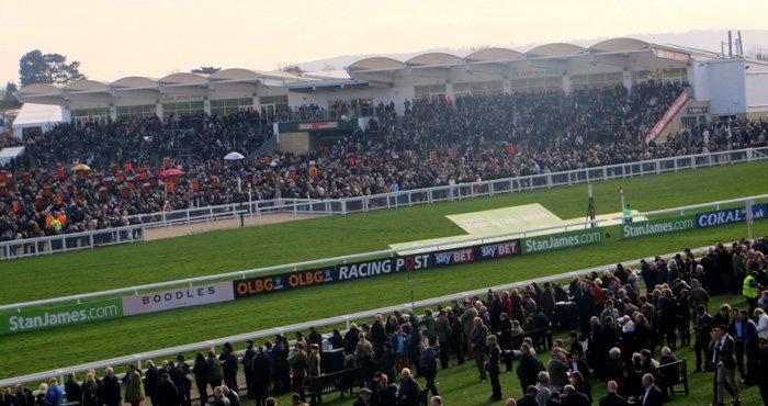 Cheltenham festival - horse racing
