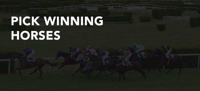 Pick winning horses 2020