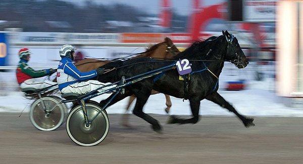 Norway horse racing