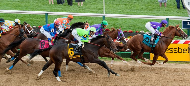 Preakness stakes betting odds