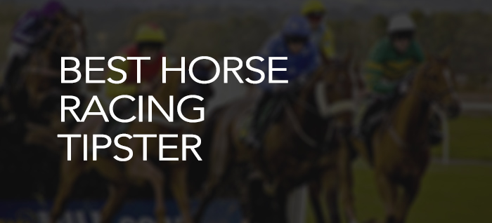 Best horse racing tipster