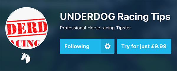 Best racing tipster - Underdog Racing Tips
